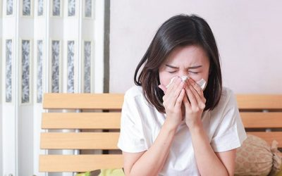 Everything you need to know about allergies
